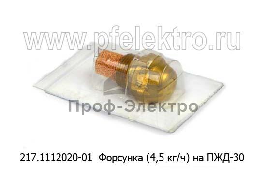 Форсунка (4,5 кг/ч) на ПЖД-30, ЛАЗ, ЗИЛ, ЛИАЗ, спецтехника (ИЦ) 1