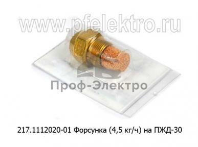 Форсунка (4,5 кг/ч) на ПЖД-30, ЛАЗ, ЗИЛ, ЛИАЗ, спецтехника (ИЦ)