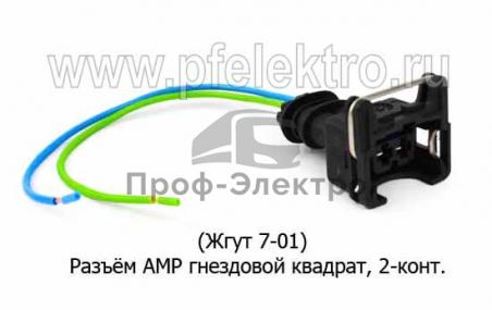 Разъём с проводами (74.3731, 50.3731-01, 4802.3731-02) (ТрАС)